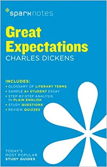 great expectations book review essay great expectations summary bookrags com