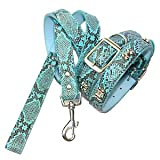 Cobra Skin Pattern Chrome Bones Dog Lead - Small, Turquoise Blue ~ HOW'S YOUR DOG -...