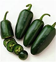 Go Green Pepper/Chilli Jalapeno Pickled Chilli - 30 Seeds