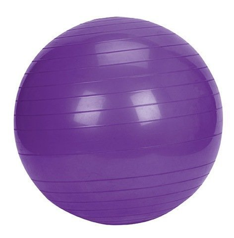55cm Gym Ball with Pump