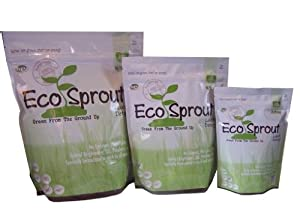 Eco Sprout Laundry Detergent - 24 to 48 loads - UNSCENTED