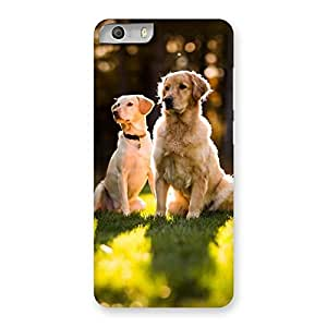 Cute Do Kutte Back Case Cover for Micromax Canvas Knight 2