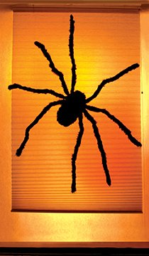 "WOWindow Posters Black Widow Spider Halloween Window Decoration 34.5""x60"" Backlit Poster"