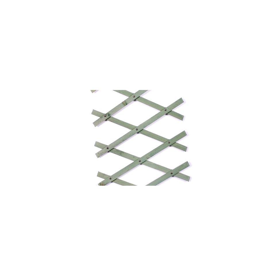 Tenax plastic expanding trellis 2m x 1m green garden on for Fenetre 2m x 1m