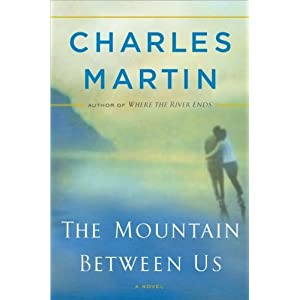 Charles Martin'sThe Mountain Between Us: A Novel [Hardcover](2010)