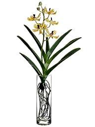 Silk Plants Direct Panee Vanda Orchid Plant (Pack of 2)