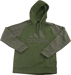 adidas Logo Tech Fleece Hoodie (Medium, Base Green/Grey)