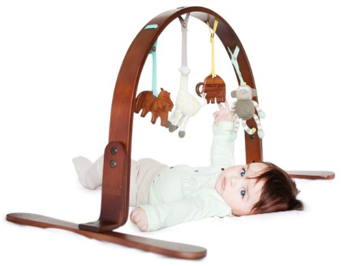 Finn + Emma Organic Cotton Baby Neutral Wood Play Gym - Jungle