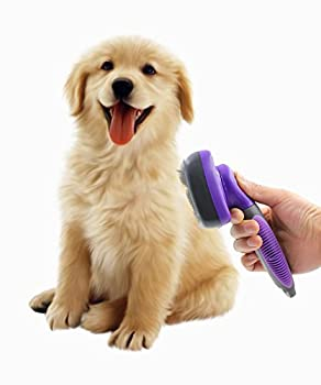 best-brush-for-australian-shepherd