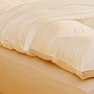 Pacific Coast® Feather Bed Cover w zip closure