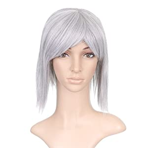 Gray Silver Straight Short Shoulder Length Anime Cosplay Costume Wig