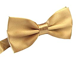 FSLESI Men\'s Pre Tied Wedding Party Fancy Plain Necktie Bow Ties,Champagne