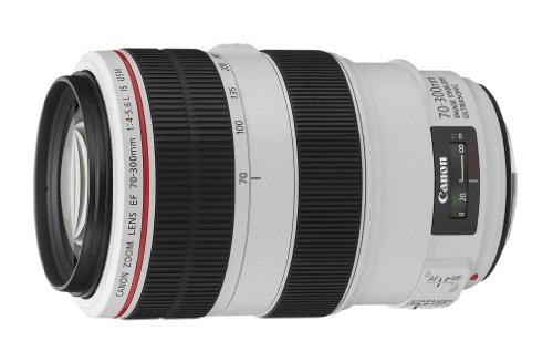 Canon EF70-300LIS EF70-300mm F4-5.6L IS USM