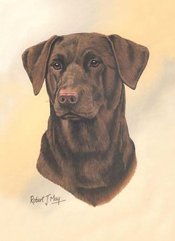 Chocolate Labrador Retriever Lab Playing Cards - Art by Robert May by PP