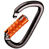 Black Diamond Magnetron Gridlock Screwgate Carabiner