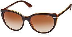 Vogue Gradient Cat Eye Sunglasses (0VO2941S227913Medium) (Top Brown and Orange Transp)