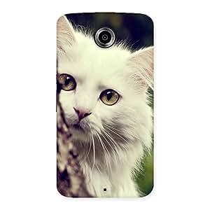 Impressive Cat Hide Back Case Cover for Nexsus 6
