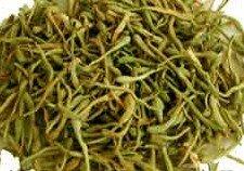 Amazon.com: Bulk Herbs: Honeysuckle Flower (Whole): Health & Personal Care
