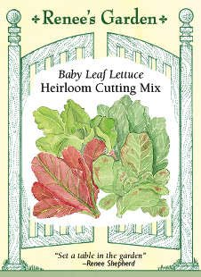 Baby Lettuce Seeds - Heirloom Cutting Mix