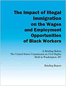 The Impact of Illegal Immigration on the Wages and Employment Opportunities of Black Workers - US Commission on Civil Rights