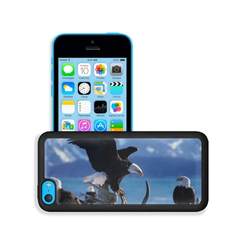 Eagle Bird Fly Swing Predators Apple Iphone 5C Snap Cover Premium Leather Design Back Plate Case Customized Made To Order Support Ready 5 Inch (126Mm) X 2 3/8 Inch (61Mm) X 3/8 Inch (10Mm) Liil Iphone_5C Professional Case Touch Accessories Graphic Covers front-945017