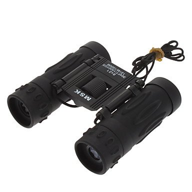 Xs 8X21 Fashionable Folding Outdoor Binocular Telescope (Black)