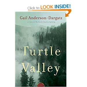Turtle Valley Gail Anderson-Dargatz