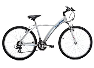"Raleigh Roam Unisex Bike - 26"" Inch (Old Version)"
