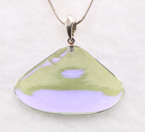 Necklace: Small Seashell Pendant