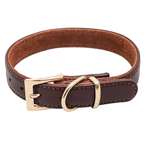 ARES Brown Leather Padded Dog Collar for Medium and Large Dog Breeds - Fits 16''-20'' Necks