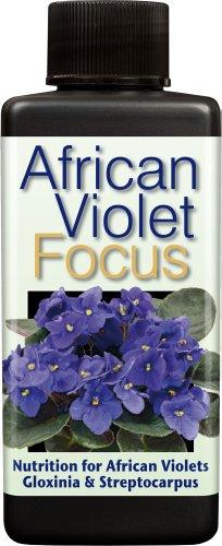 african-violet-focus-100ml