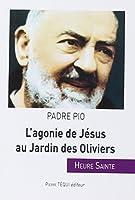 L'agonie de Jésus au Jardin des Oliviers
