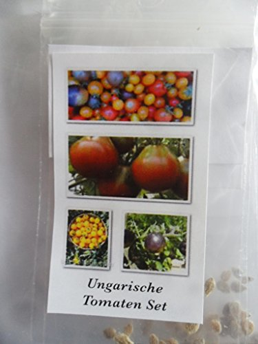 historische ungarische tomatensorten im set 10 bestimmte sorten 100 samen. Black Bedroom Furniture Sets. Home Design Ideas