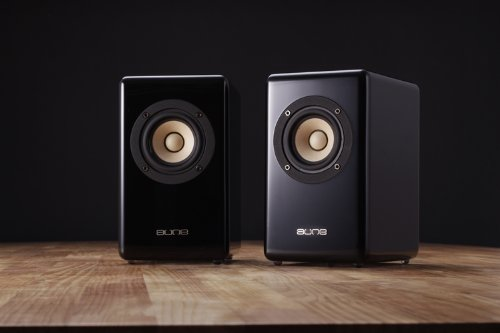 Aune X3 Hifi Speakers, Much Smaller And Lighter Compare To Traditional Hifi Passive Speakers, Shockproof Nail To Avoid Resonance, By Gemini Doctor. (Black)