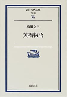 黄禍物語 (岩波現代文庫)