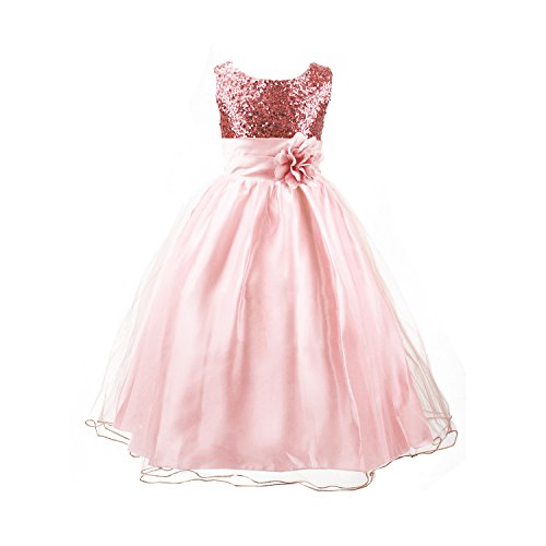 Acediscoball Big Girls'Flower Party Wedding Gown Bridesmaid Tulle Ruffle Dress Size US 7/6-7years Pink