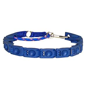 Perfect Dog Command Collar, Large