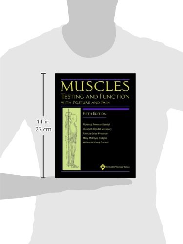 manual muscle testing upper extremity