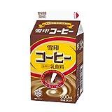 雪印コーヒー 500ml×20本セット≪クール便発送≫