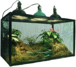Reptarium (38 Gallon)-