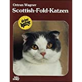 Scottish- Fold- Katzen