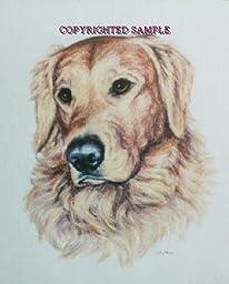 Golden Retriever - Portrait by Cindy Farmer