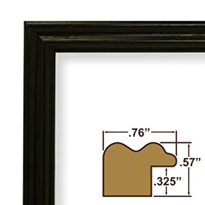 Craig Frames 200ASHBK 0.75-Inch Wide Picture/Poster Frame with Wood Grain Finish, 24 by 24-Inch, Black
