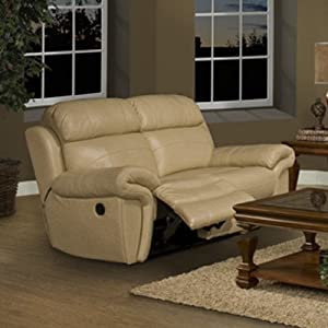 Motion Apollo Leather Reclining Loveseat Sofas