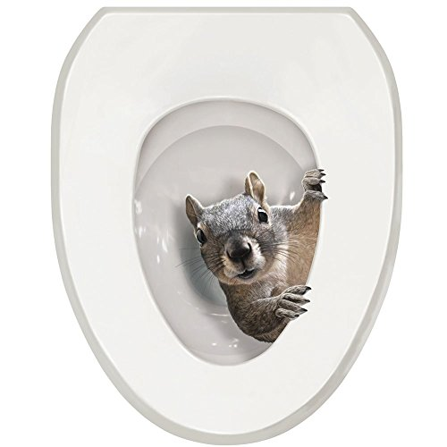 It's A Squirrel! Toilet Seat Tattoo Decal - Round