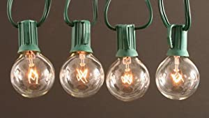 Clear Globe String Lights Set of 25 G40 Bulbs Indoor / Outdoor, Green Wire