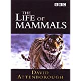Life of Mammals [DVD] [2002]by David Attenborough