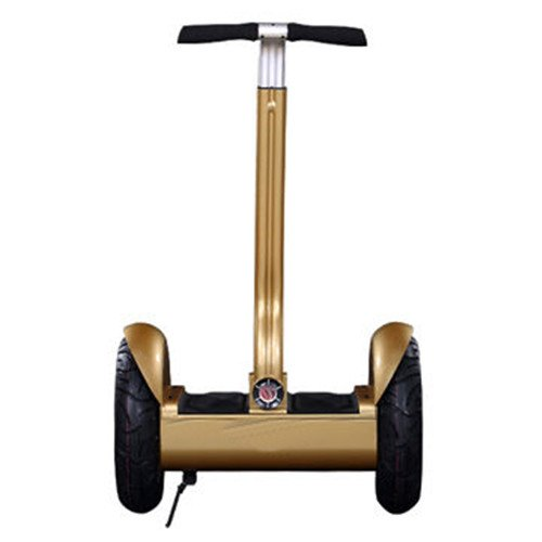 Ce/Rohs/Fcc Approved 2 Wheel City Road Self Balancing Electric Scooter 24V 14Ah 1600 Watt (Gold)