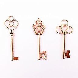 Aokbean Vintage Skeleton keys in Rose Gold Style - Set of 30pcs (Rose Gold)