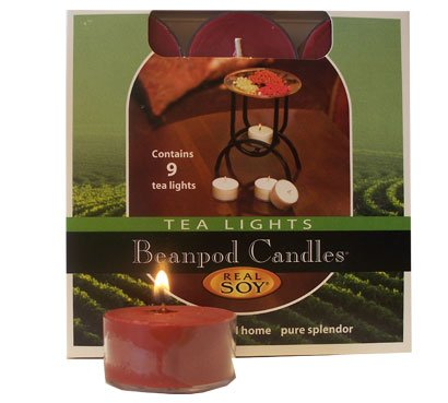 Beanpod Candles Cinnamon Spice, Tea Light, 9-count Box